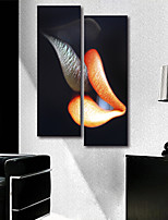 Canvas Print Modern,Two Panels Canvas Vertical Print Wall Decor For Home Decoration