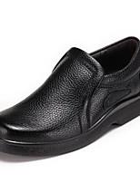 Недорогие -Для мужчин обувь Натуральная кожа Весна Осень Удобная обувь Мокасины и Свитер для Повседневные Черный