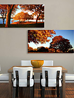 Canvas Print Rustic Modern,Two Panels Canvas Horizontal Print Wall Decor For Home Decoration