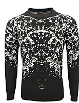 cheap -Men's Sports Going out Long Pullover,Print Stand Long Sleeves Polyester Winter Fall/Autumn Medium Micro-elastic