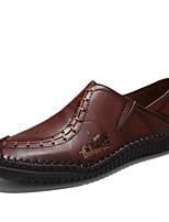 Недорогие -Муж. обувь Кожа Весна Лето Удобная обувь Мокасины и Свитер для Повседневные на открытом воздухе Черный Темно-русый Темно-коричневый
