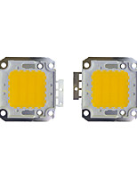 cheap -30W COB 2400LM 3000-3200K/6000-6200K Warm White/White LED Chip DC30-36V 2Pcs