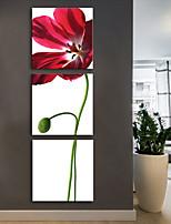 preiswerte -Leinwanddruck Rustikal Modern,Drei Paneele Leinwand Druck Wand Dekoration Haus Dekoration