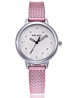 cheap -Women's Wrist watch Fashion Watch Chinese Quartz Large Dial Plastic Band Casual Minimalist Black White Blue Red Gold Pink Clover