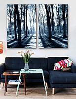 Недорогие -Холст для печати Modern,2 панели Холст Вертикальная С картинкой Декор стены Украшение дома