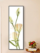 cheap -Botanical Illustration Wall Art,Aluminum Alloy Material With Frame For Home Decoration Frame Art Living Room Indoors