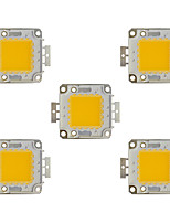 cheap -100W COB 8000LM 3000-3200K/6000-6200K Warm White/White Light LED Chip DC30-36V 5Pcs