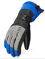 Недорогие -Спортивные перчатки Лыжные перчатки Универсальные Полный палец Сохраняет тепло Лыжи Спортивныеперчатки Снежные виды спорта Велоспорт