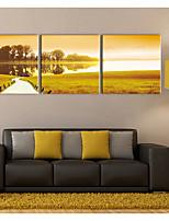 cheap -Canvas Print Rustic Modern,Three Panels Canvas Square Print Wall Decor Home Decoration