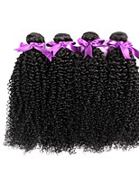 cheap -Brazilian Kinky Curly Human Hair Weaves 4 Pieces 0.2