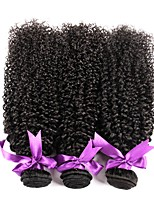 cheap -Brazilian Kinky Curly Human Hair Weaves 3 Pieces 0.15
