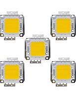 cheap -20W COB 1600LM 3000-3200K/6000-6200K Warm White/White Light LED Chip DC30-36V 5Pcs