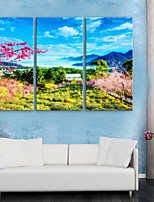 preiswerte -Leinwanddruck Rustikal Modern,Drei Paneele Leinwand Vertikal Druck Wand Dekoration Haus Dekoration