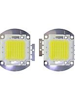 Недорогие -70w cob 5600lm 3000-3200k / 6000-6200k теплый белый / белый светодиодный чип dc30-36v 2шт