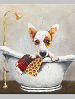 cheap -Hand-Painted Animals Square, Animals Simple Modern Canvas Oil Painting Home Decoration One Panel