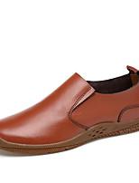 Недорогие -Муж. обувь Натуральная кожа Кожа Весна Лето Удобная обувь Мокасины и Свитер для Повседневные Черный Коричневый