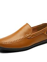 Недорогие -Муж. обувь Кожа Весна Лето Удобная обувь Мокасины и Свитер для Повседневные Офис и карьера Белый Черный Темно-русый Темно-коричневый