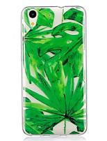 abordables -Coque Pour Huawei Y6 II / Honor Holly 3 Nova Motif Coque Arrière Fleur Flexible TPU pour Huawei Y6 II / Honor Holly 3 Huawei Y5 II /