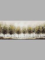 economico -Dipinta a mano Astratto Orizzontale, Modern Tela Hang-Dipinto ad olio Decorazioni per la casa Un Pannello