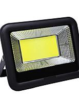 Недорогие -1шт 100 Вт Свет газонные Водонепроницаемый Уличное освещение Тёплый белый 110V-220V