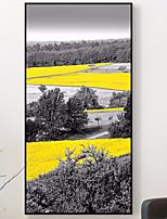 Недорогие -Предметы искусства,Дерево материал с рамкой For Украшение дома Предметы искусства в рамках В помещении