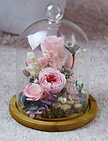 cheap -Wedding Birthday Party Favors & Gifts - Gifts Ornaments Flower Dried Flower Glass Romance