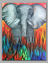 cheap -Hand-Painted Animals Pop Art Vertical, Modern Canvas Oil Painting Home Decoration One Panel