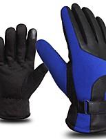 cheap -WEST BIKING® Sports Gloves Keep Warm Winter Sports Full-finger Gloves Road Cycling Cycling / Bike