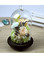cheap -Wedding Birthday Party Favors & Gifts - Gifts Floral Dried Flower Romance