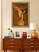 cheap -Animals Illustration Wall Art,Plastic Material With Frame For Home Decoration Frame Art Living Room Indoors