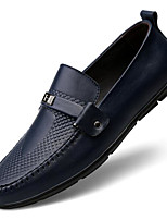 Недорогие -Муж. обувь Кожа Наппа Leather Весна Осень Удобная обувь Мокасины и Свитер для Повседневные Черный Коричневый Синий