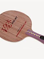 abordables -DHS® DI-RT FL Ping Pang/Tennis de table Raquettes Vestimentaire Durable En bois Fibre de carbone 1