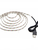 cheap -1m Flexible LED Light Strips 60 LEDs Warm White Cold White Decorative USB Powered DC 5V 1pc