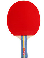 cheap -DHS® E302 Ping Pang/Table Tennis Rackets Wood Rubber 3 Stars Long Handle Pimples