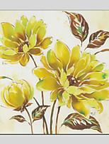 baratos -Pintados à mão Floral/Botânico Quadrada, Modern Pintura a Óleo Decoração para casa 1 Painel