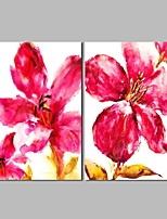 cheap -Hand-Painted Abstract Floral/Botanical Horizontal Panoramic, Classic Canvas Oil Painting Home Decoration Two Panels