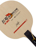 cheap -DHS® Hurricane H-WL CS Ping Pang/Table Tennis Rackets Wearable Durable Wooden Carbon Fiber One-piece Suit