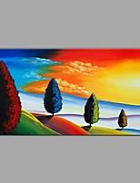 Недорогие -Ручная роспись Пейзаж Цветочные мотивы/ботанический Горизонтальная, Современный Modern холст Hang-роспись маслом Украшение дома 1 панель