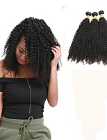 cheap -Malaysian Kinky Curly Human Hair Weaves 3pcs 0.3