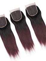 Недорогие -ALIMICE Бразильские волосы Прямой силуэт 4x4 Закрытие плетение волос Швейцарское кружево Натуральные волосы Реми Бесплатный Часть Средняя