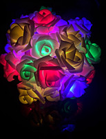 cheap -not-waterproof 40 leds multicolor decorative dc powered