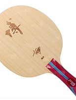 economico -DHS® Hurricane B-FL Ping-pong Racchette Indossabile Duraturo di legno Fibra di carbonio 1