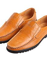 Недорогие -Муж. обувь Кожа Лето Удобная обувь Мокасины и Свитер для Повседневные на открытом воздухе Черный Темно-русый Темно-коричневый