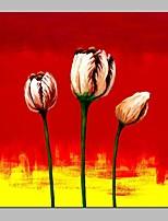 Недорогие -Hang-роспись маслом Ручная роспись - Абстракция Цветочные мотивы / ботанический Классика холст