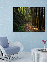 cheap -Wall Decal Decorative Wall Stickers Floor Stickers - 3D Wall Stickers Landscape History Re-Positionable