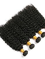 Недорогие -6 Связок Индийские волосы / Вьетнамские волосы Kinky Curly Натуральные волосы / Необработанные натуральные волосы Подарки / Косплей Костюмы / Человека ткет Волосы 8-28 дюймовый Естественный цвет