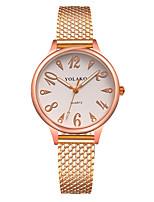 baratos -Mulheres Quartzo Relógio de Moda Chinês Relógio Casual Plastic Banda Minimalista Colorido Preta Branco Azul Vermelho Verde Dourada Rosa