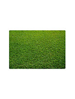 cheap -Doormats / Area Rugs / Bath Mats Sports & Outdoors / Country Flannelette, Rectangle Superior Quality Rug