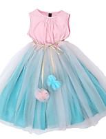 Недорогие -Дети Девочки Контрастных цветов Без рукавов Платье