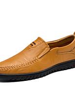 Недорогие -Муж. обувь Кожа Весна Осень Удобная обувь Мокасины и Свитер для Повседневные Офис и карьера Черный Темно-русый Темно-коричневый
